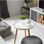 sonos koppelan aan google home kan via homey